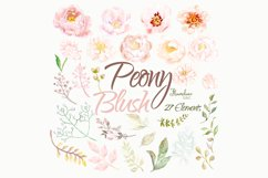 Watercolor Peony Blush Clipart Bundle Product Image 2