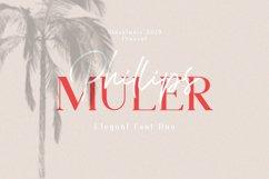 Phillips Muler // Elegant Font Duo Product Image 1
