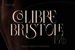 Colibre Bristole Pro |Aesthetic Ligature Font Product Image 1
