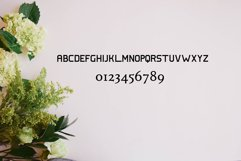 Hillton and Absolute Italic Product Image 2