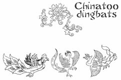 Chinatoo Product Image 4