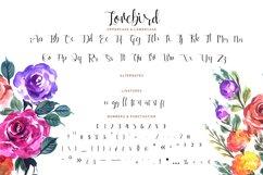 Lovebird Product Image 3
