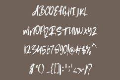 Rubin Key - Brush Font Product Image 2