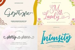 BEST CRAFTER FONT COLLECTIONS Product Image 3