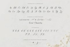 claytona Modern Calligraphy Script Font Product Image 6