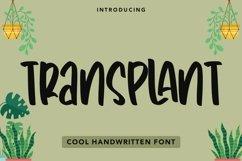 Web Font Transplant - Handwritten Font Product Image 1