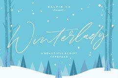 Winterlady Beautiful Script Font Product Image 1