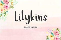 Lilykins Sans Product Image 1