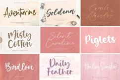 Handwritten 50 Fonts | All Collection Bundle Product Image 2