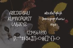 Tomcat - Cheerfull Day Font Product Image 5