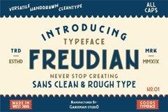 FREUDIAN TYPEFACE Product Image 1
