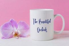 Brethren - Beautful Handwritten Font Product Image 4