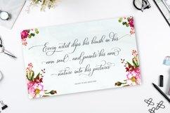 Bettrisia Script - Elegant Calligraphy Font Product Image 6