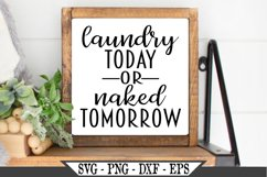Laundry Today Or Naked Tomorrow SVG Product Image 2