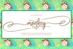 monkey Product Image 1