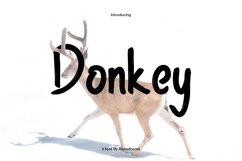 Donkey Font Product Image 1