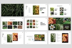 Farm - Agriculture Google Slide Template Product Image 4