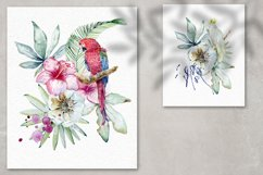 Tropical summer. Watercolor set. Product Image 5