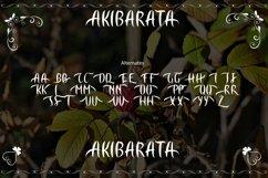 AKIBARATA Product Image 6