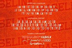 Web Font Baseline Font Product Image 5