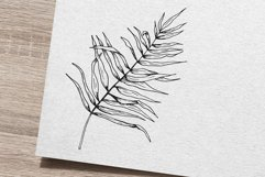 Palm leaf. Hand-drawn sketch and seamless patterns with it. Product Image 6