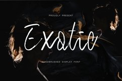 Exotic - Handbrushed Display Font Product Image 1