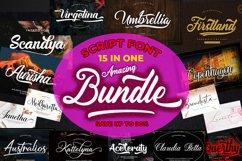 Amazing Bundles Fonts Product Image 1