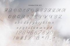 Web Font Lovebird Product Image 5