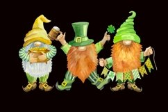 St Patricks Day Gnomes Sublimation designs downloads. Product Image 3