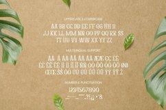 Web Font Abony Acacia Font Product Image 5