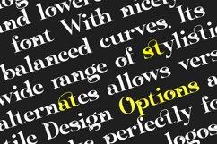 Sangi Serif Product Image 4