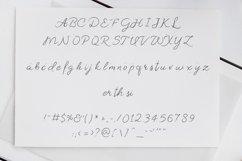 Artystka Script Product Image 2