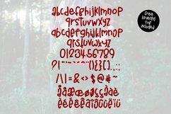 Buffalo Jane a Plaid Font Product Image 5