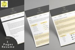 Black Gold Resume Template Product Image 2