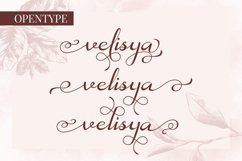 Velisya Product Image 2