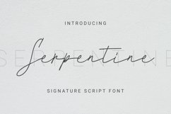 Serpentine Font Product Image 1