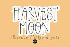Autumn Font Bundle - 4 Hand Lettered Fall Fonts Product Image 4