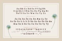 Bull Ranch - Vintage Display Font Product Image 5