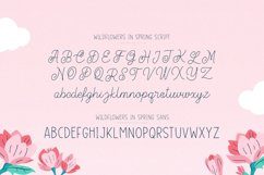 Wildflowers in Spring Font Duo Product Image 2