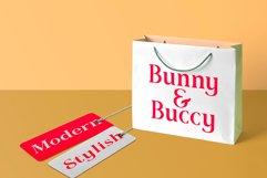 Romerio | Elegant Serif Style Product Image 3