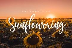 Sunflowering Product Image 1