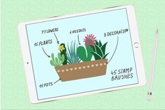 Succulents and pots stamp brushes Product Image 2