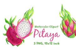 Dragon Fruit Watercolor Clipart Png Product Image 1