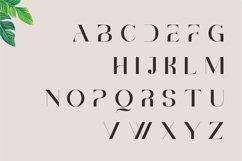 Brescia   Modern Serif Product Image 3