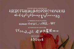 Web Font Sloriya - Brush & Beauty Font Product Image 2