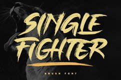 Single Fighter Product Image 1