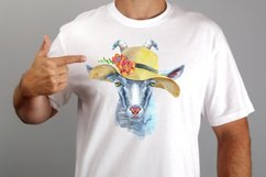 Cheeky gray goat Product Image 2