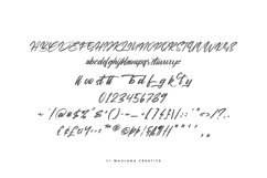 Viesta Brush Script Vintage Handmade Font Typeface Product Image 2