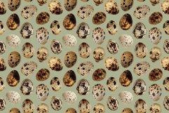 Quail eggs bird food kitchen photo seamless pattern texture Product Image 2