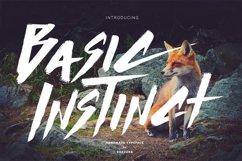 Basic Instinct Typeface Product Image 1